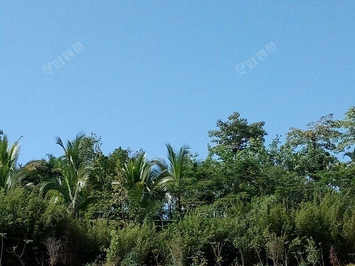 景洪市区旁边澜沧江畔风光,雨过天晴风景美丽