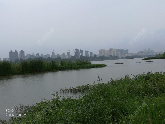 下游都已建成湿地公园了