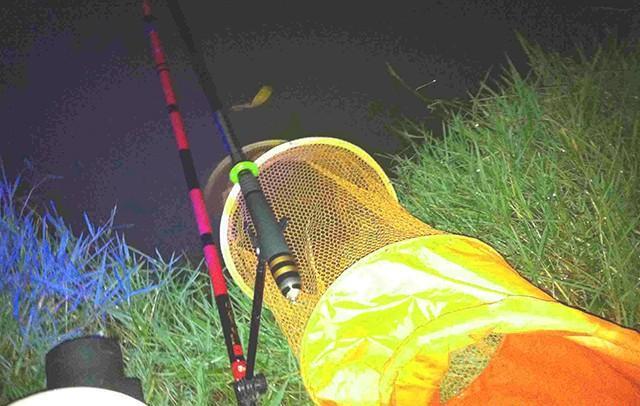 夜釣優點以及夜釣上魚最佳時間分享
