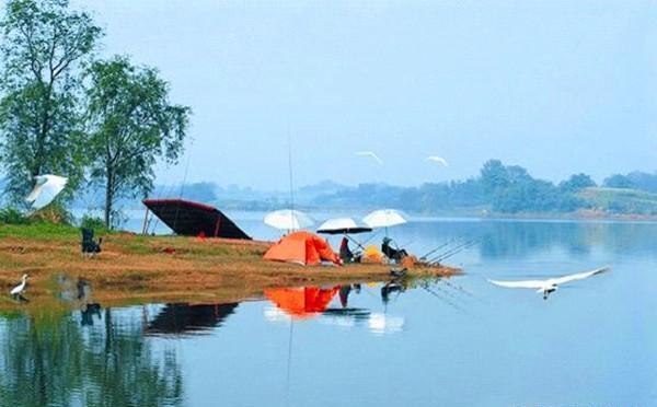 野釣水庫,6種方法選擇好釣位