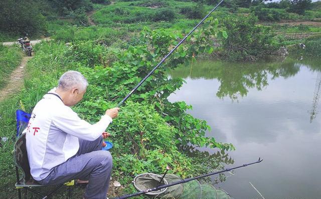 魚沒口別發愁,看看這些釣魚心得