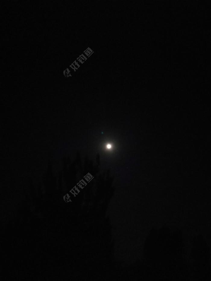 鱼口不好,是不是月亮太亮的原因?