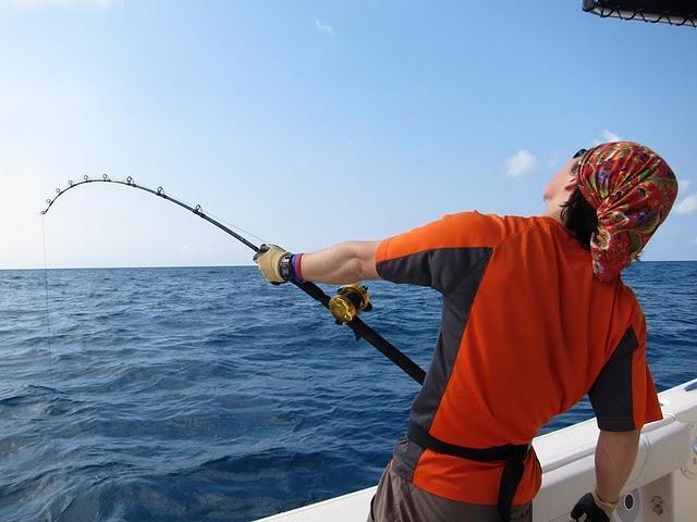 现学现卖的海钓新手,在这个地方抽两下就上鱼了