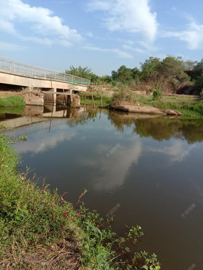 上游还有一座公路桥,这条水沟本来是以前别人凿红石卖留下的石头塘,正好连通两个湖,便于放水