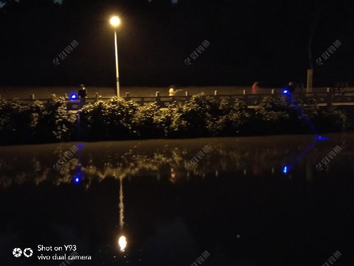昨晚河边散步,看对岸钓友渔火闪闪