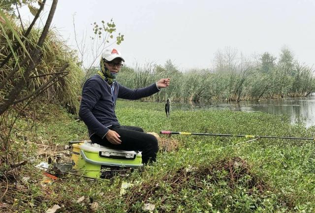 秋天野钓鲫鱼,选择钓位和饵料与调钓技巧总结