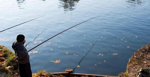 秋季野钓找钓位,教你4个方法下竿即见鱼