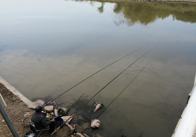 这3件事做的越多,人们越烦钓鱼人,种其因者,须食其果
