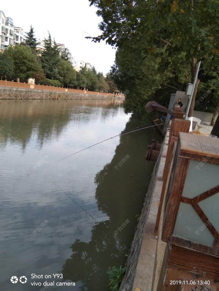 因河水走得有些厉害,五米四竿采用崩竿钓