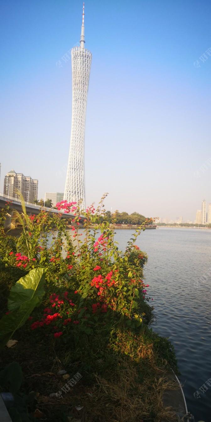 一眼望去,广州塔屹立在珠江边上,珠江边上的鲜花,美丽的奔放,风儿吹来淡淡的花香,看到这迷人的景色,让人的心情也心花怒放,