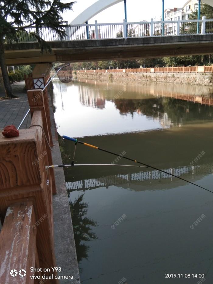 上午钓到大鲤鱼是在我的西边几十米远