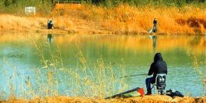 細說拉餌調漂,冬季手竿釣鯽魚必學技巧