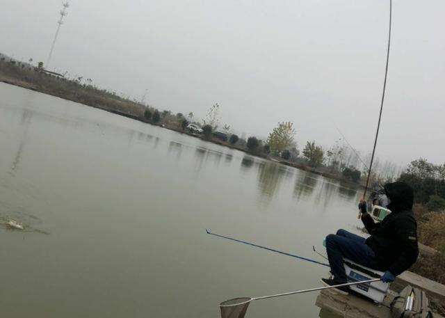 在寒冷的冬季,户外野钓大鲫鱼时,可以选用的几个作钓方法