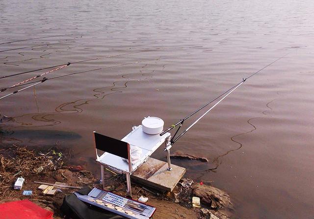 自然水域钓鱼,如何判断水中有没有鱼?