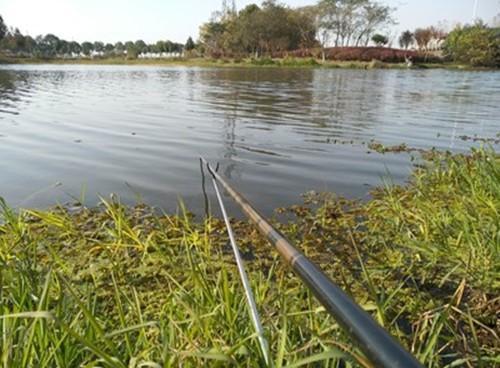 冬季初到陌生水域如何判断是否有鱼?