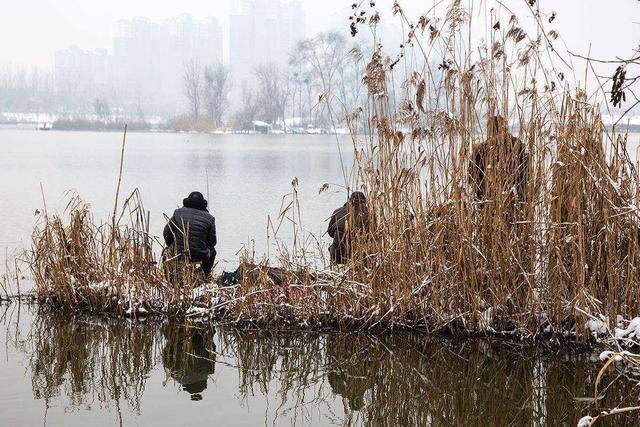 冬天钓鱼你找到这种地方大概率爆护