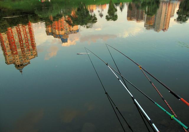 根据温度、水温、和鱼的习性来钓鱼,会更好