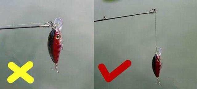 为什么国内路亚总是钓不到鱼,需要克服哪些难关(图5)