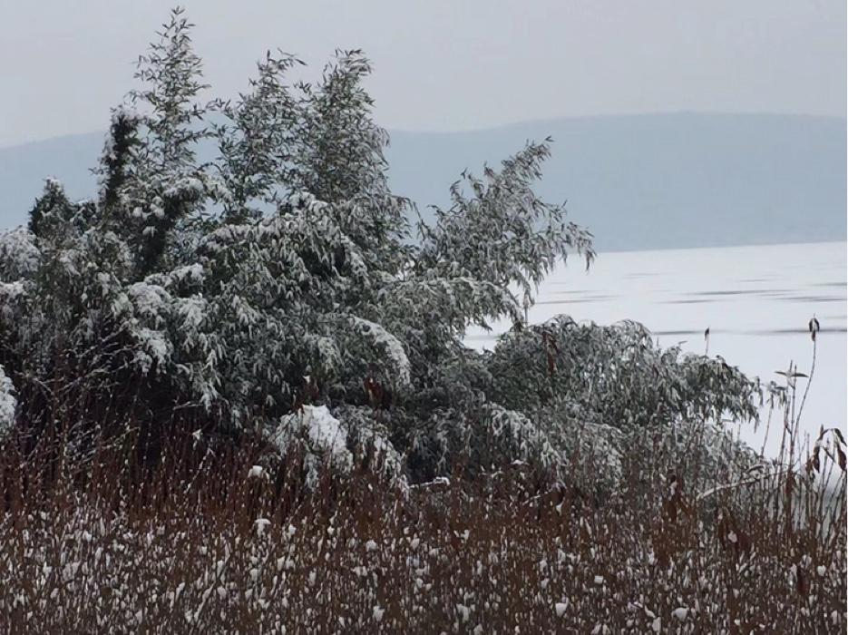 云龙湖雪景