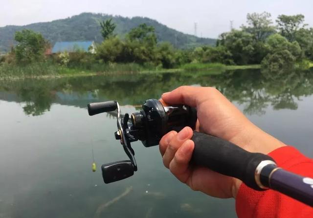 钓黑鱼必须买雷强竿?核心是资源,鱼竿反而可以先找替代品