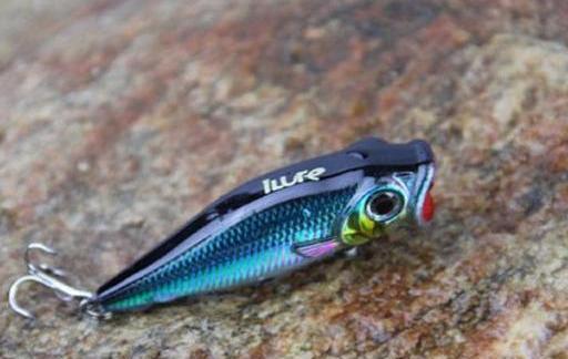 人与鱼眼中路亚拟饵颜色的区别,如何选择拟饵颜色(图3)
