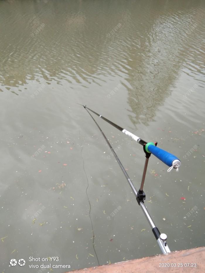 这个昔日的钓位,还是出了不少鱼的