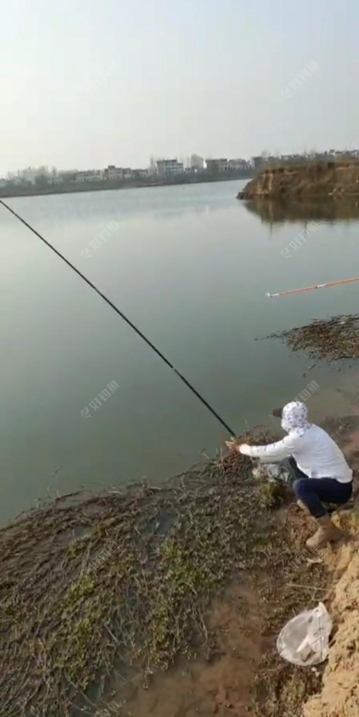 这是旁边钓友拍的,此时正在溜一尾鲤鱼,钓位前面实在是太狭窄,一不小心鱼儿都能把我拉进水里面!