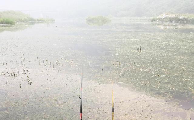 钓鱼究竟为了什么?这位70岁老钓友的回答