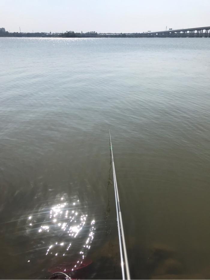 水面有点反光