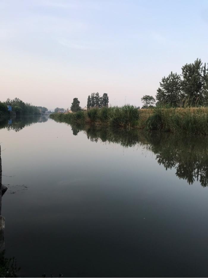 到了钓场的河边,天才蒙蒙亮。