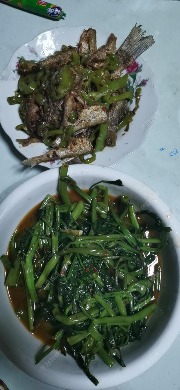 学着做的油炸白条炒辣椒,味道不错,原谅做菜的技术真不好!