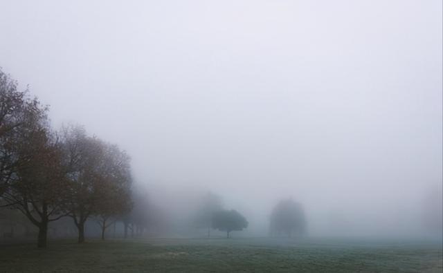想知道雾天好不好钓鱼,搞明白湿度对雾气的影响