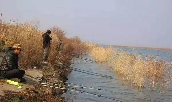 弄明白这些钓鱼口诀,钓鱼小白也能在冬天找到鱼窝(图4)