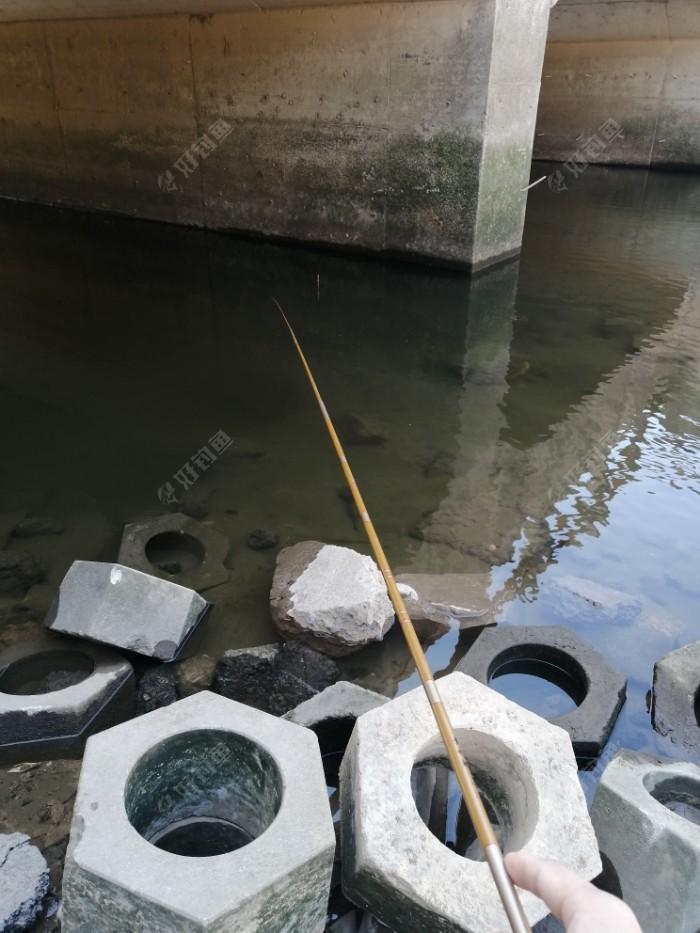 半米多一点,卧槽。鱼都看得见游