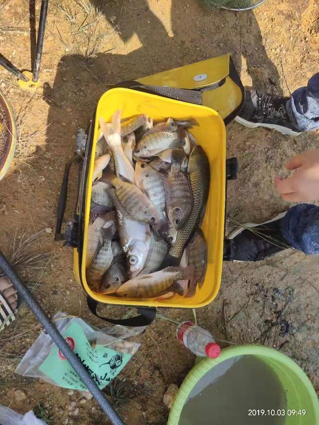 野钓如何保证鱼获?几个低保方案请收好