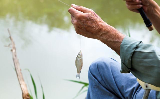 春季作钓的两大细节,让你上鱼更多