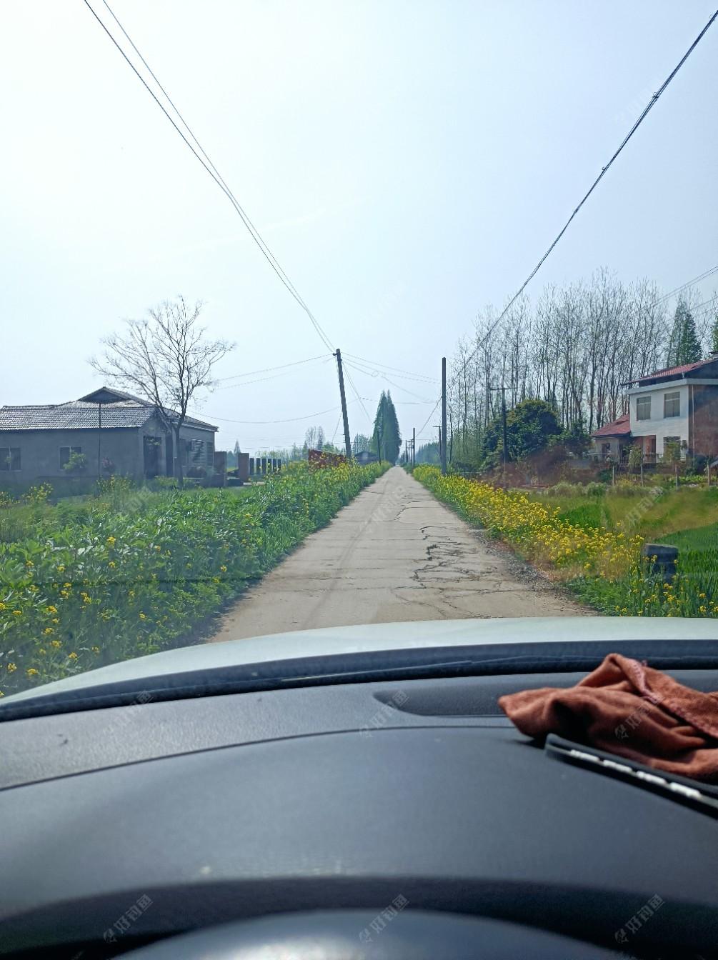 又走在乡村小路上了。远处是金家垱电排!