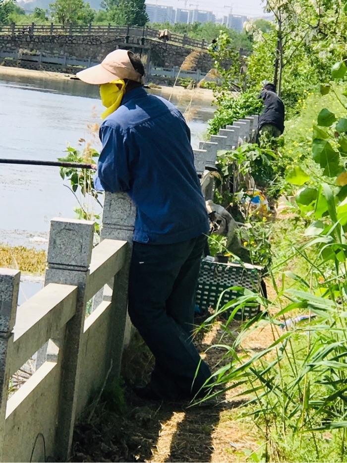 老王钓鱼的丰姿!注意看了吗,今天把老婆的帽子和遮脸巾给带上了;前边的是老李。