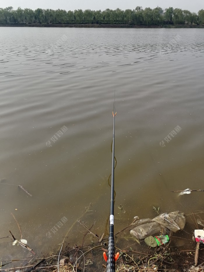 今天,还是有风,鱼漂几乎没有静止过,总是在水面跳芭蕾,上下左右晃动不停。