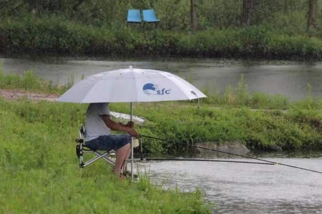 夏季雨天难钓鱼?没料到我只用了3招,鲫鲤鱼上个不停