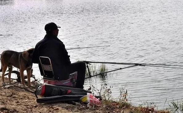 有鱼咬钩后,应该什么时候提竿