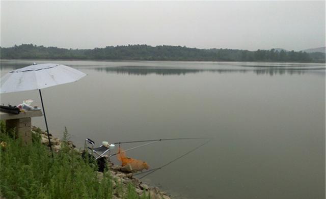 秋分前后钓鲤鱼,首选这几种天气(图2)