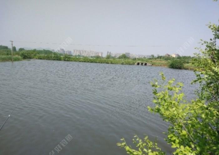 Screenshot_20210803_181517_com.yuqu.diaoyu_edit_149034904034028.jpeg