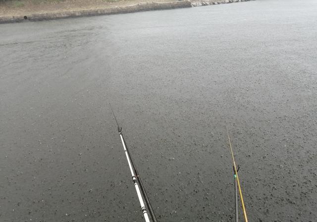 为什么降温后在河边钓鱼渔获很差,解析降温前后钓鱼技巧