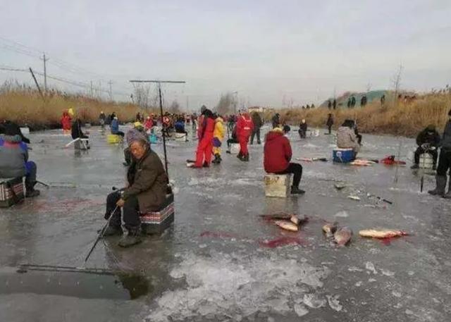 利用锚钩捕鱼的原理,锚鱼对环境的一些危害